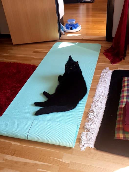 Casall yoga mat billiga yoga mattor i malmö