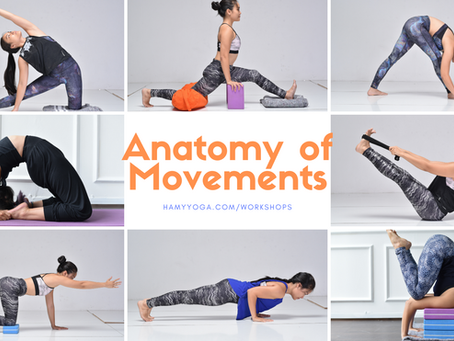 Upcoming Workshop: Anatomy of Movements