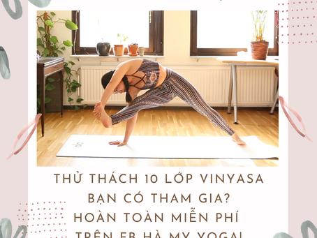 Thử thách 10 lớp Vinyasa Yoga, bạn tham gia chứ?