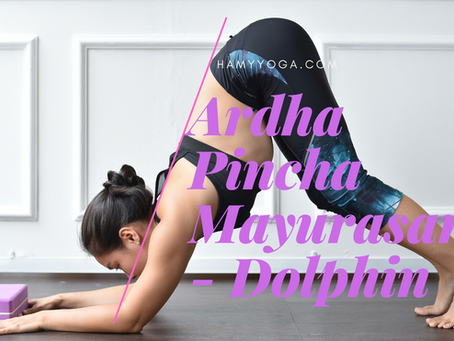 Tư thế Cá Heo trong Yoga - Ardha Pincha Mayurasana