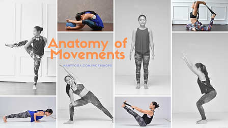 anatomy of movements (2).png