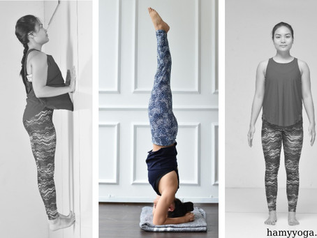 Why are there so many Yoga poses?
