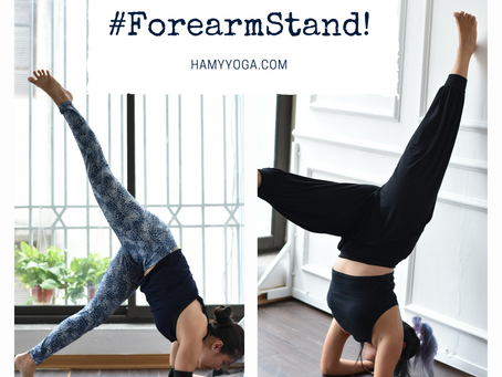 Prop Up: Forearm Stand in Yoga