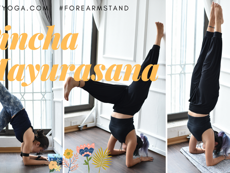 Đứng Cẳng Tay & Bọ Cạp trong Yoga - Pincha Mayurasana & Vrschykasana