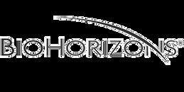 Bihorizon.png