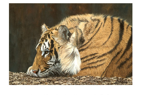 Royal Watcher - Mounted Print - Includes UK shipping