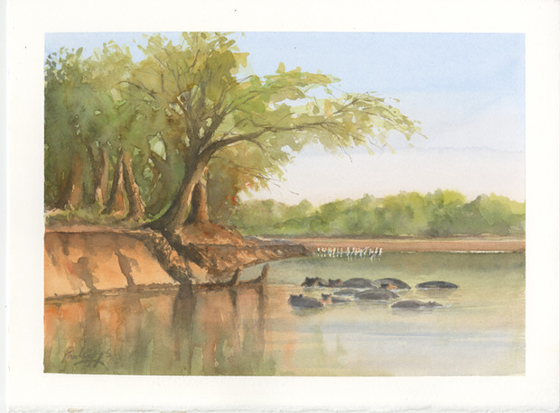 African Lake Luangwa