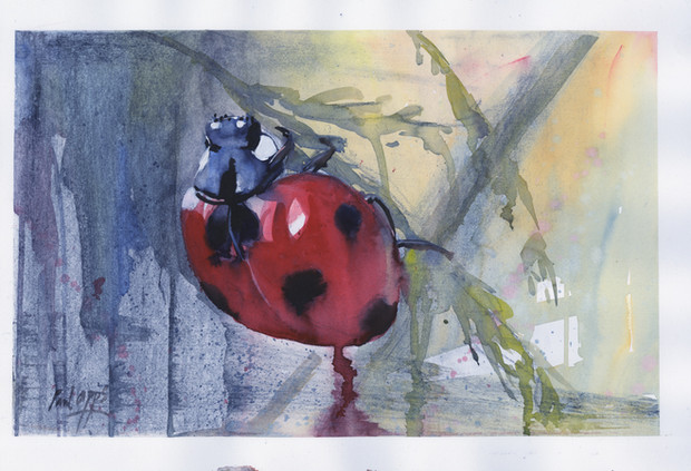 Ladybird Mixed media