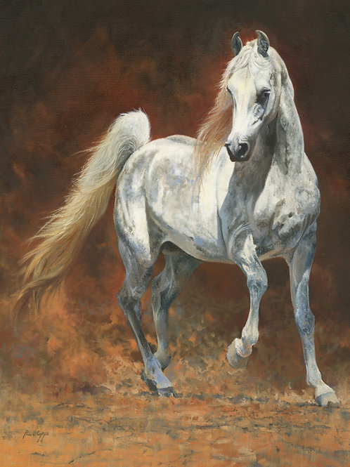 Arab Stallion - Mounted Fine Art Print - Includes UK shipping