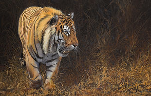 Tiger Business card1.jpg