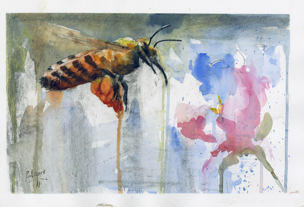Honeybee Mixed media