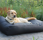 dogs-companion-hondenbed-zwart-vuilafsto