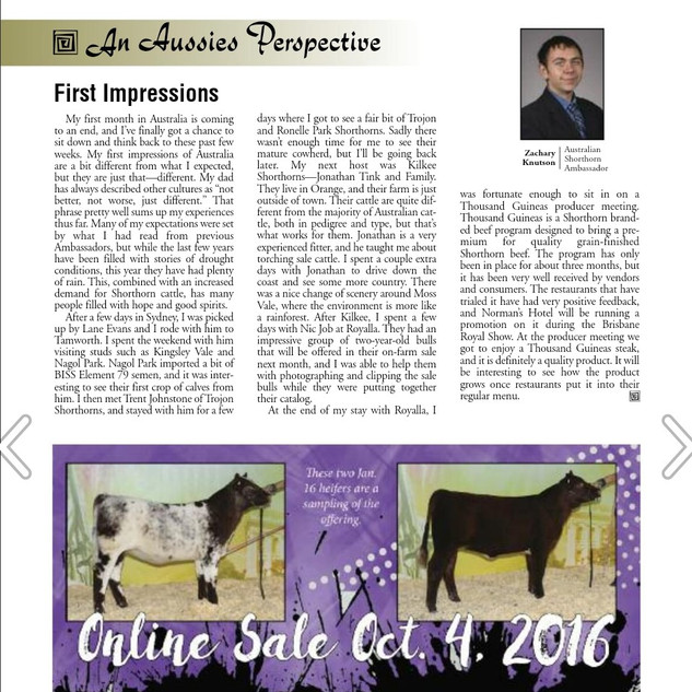 Shorthorn Country Sept 2016