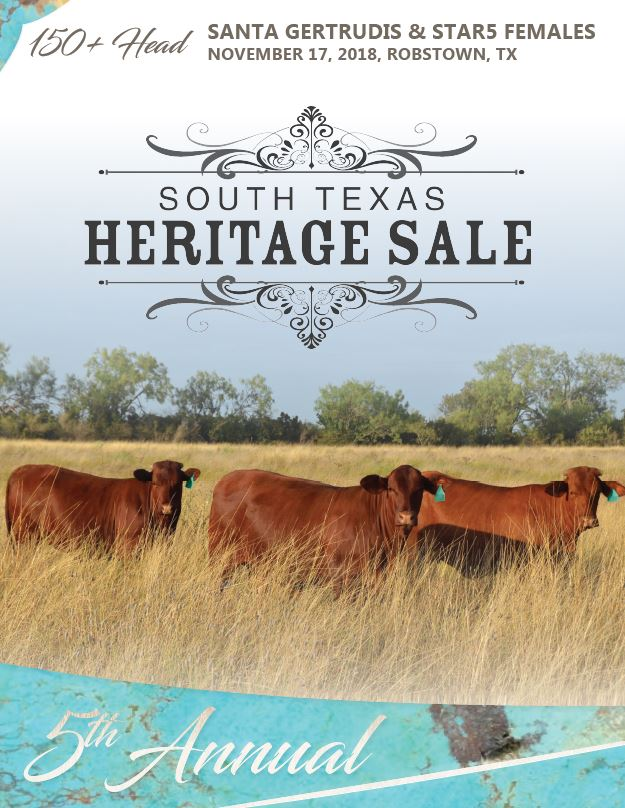 South Texas Heritage 2018