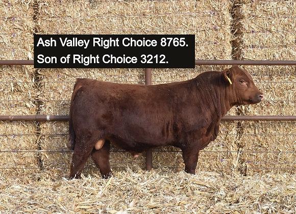 Ash Valley Right Choice 3212 (5 Straws)