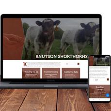 Knutson Shorthorns Website
