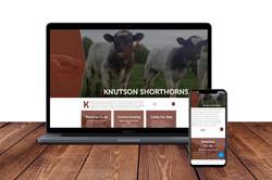 Knutson Shorthorns