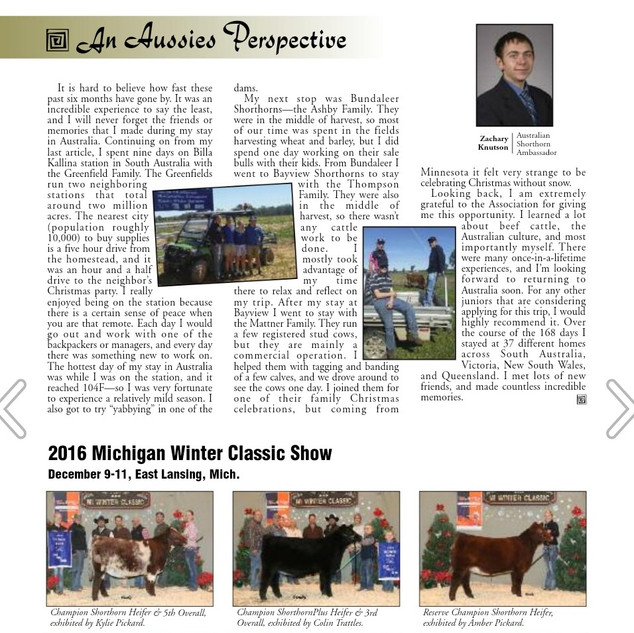 Shorthorn Country Feb 2017