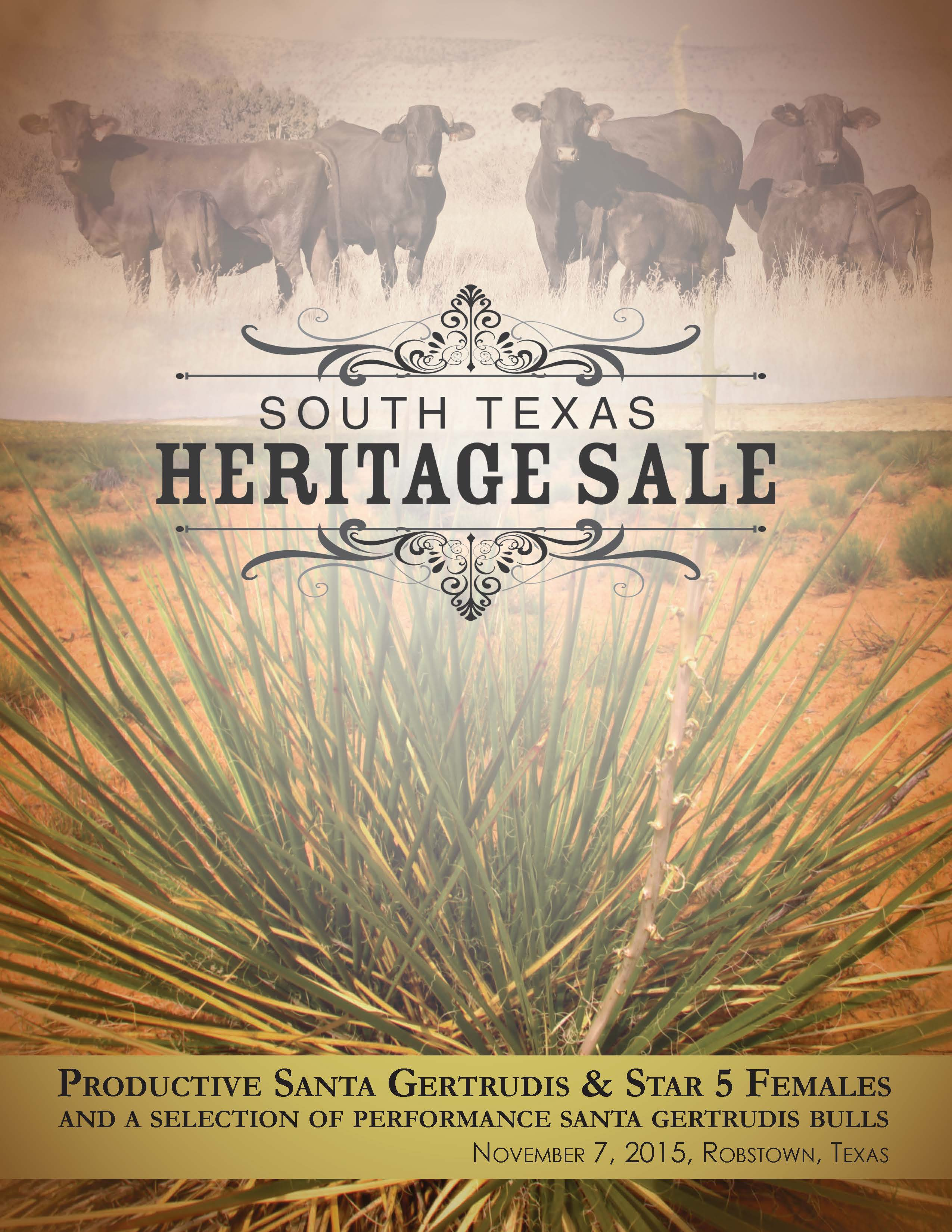South Texas Heritage