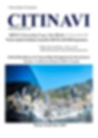 IREIS front cover.jpg