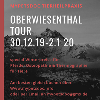 Oberwiesenthal Tour 2019.png
