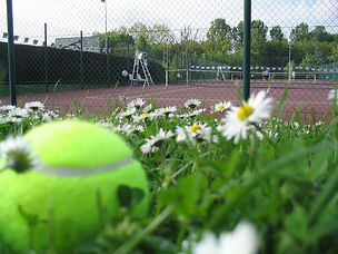 spring tennis.jpg