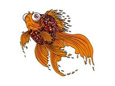 gold fish Firefish-x.jpg
