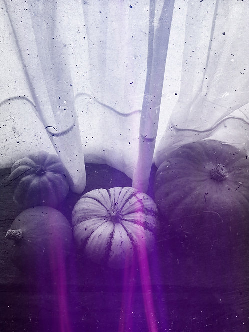 Purple Pumpkins
