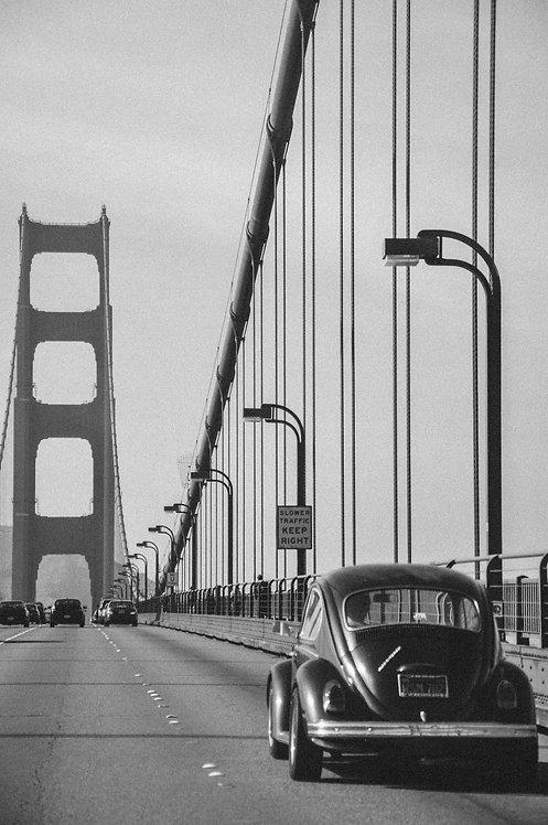 Beetle on Golden Gate Bridge
