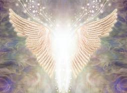 Ange ailes .jpg