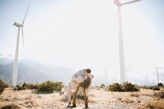Palm Springs Windmills | Delanie and Kai