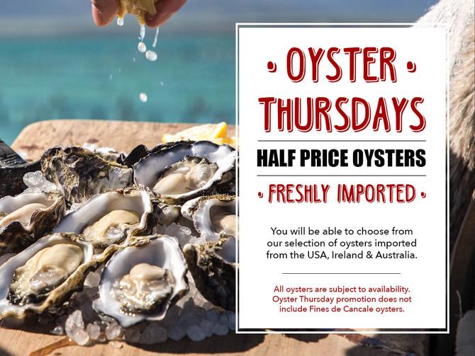 Oyster Thursday @ Blend Bistro