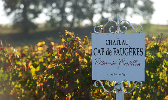 Exceptional Wine and Great Terroir