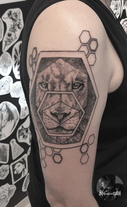 Geo Lion