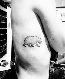 BearDesign