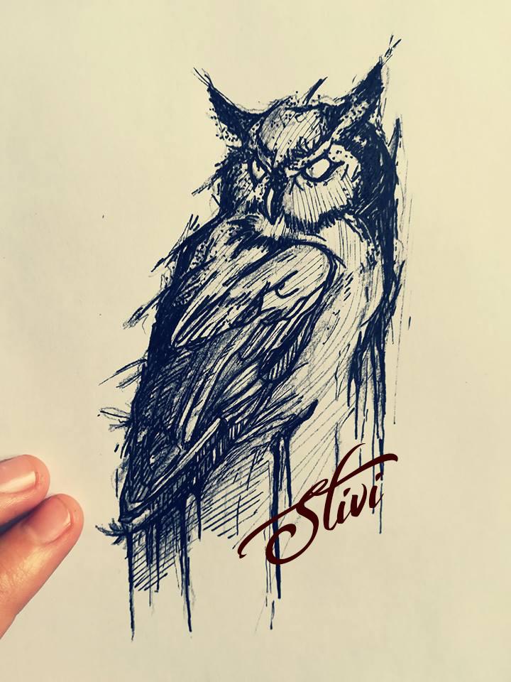 Owl sketching