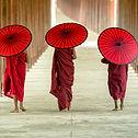 Monges budistas com guarda-chuvas