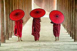 Moines bouddhistes avec des parapluies