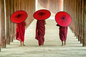 Monjes budistas con paraguas