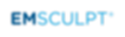 Emsculpt_LOGO_Rounded-two-blue-Toman-spe