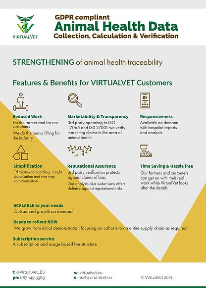 VirtualVet What we do.png