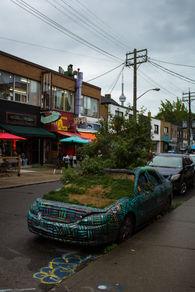 Toronto Car