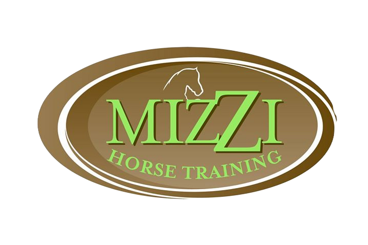 Training%20Lessons%20Quality%20Horse%20S