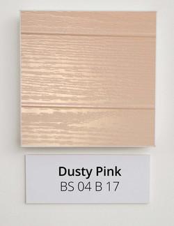 Dusty-Pink-BS-04-B-17