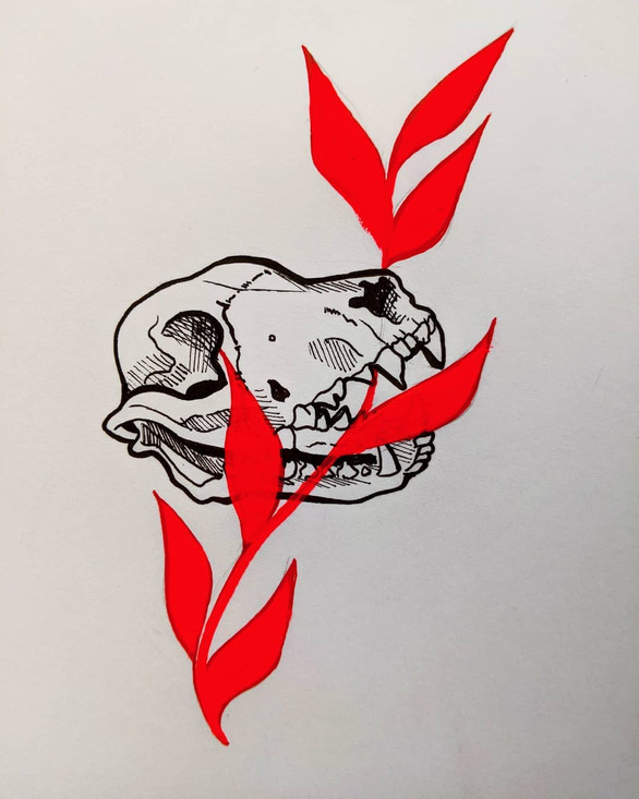 red leave and racoon dog skull