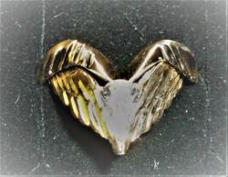AngelWing Engagement 1.JPG