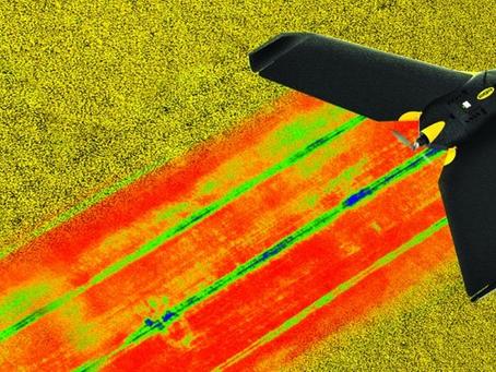 Le capteur de surveillance des cultures multispectrale de Parrot peut être installé sur des drones e