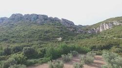 Vallon du Destet à maussane les Alpilles