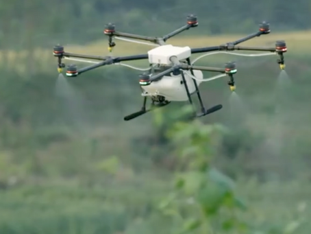 Un Drone conçu par DJI pour l'Agriculture prend l'air à la Ferme