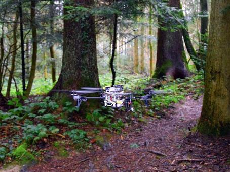 Les Drones pourraient aider les randonneurs perdus à trouver les sentiers à suivre
